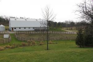 farm_0000_Small West Paddock.jpg